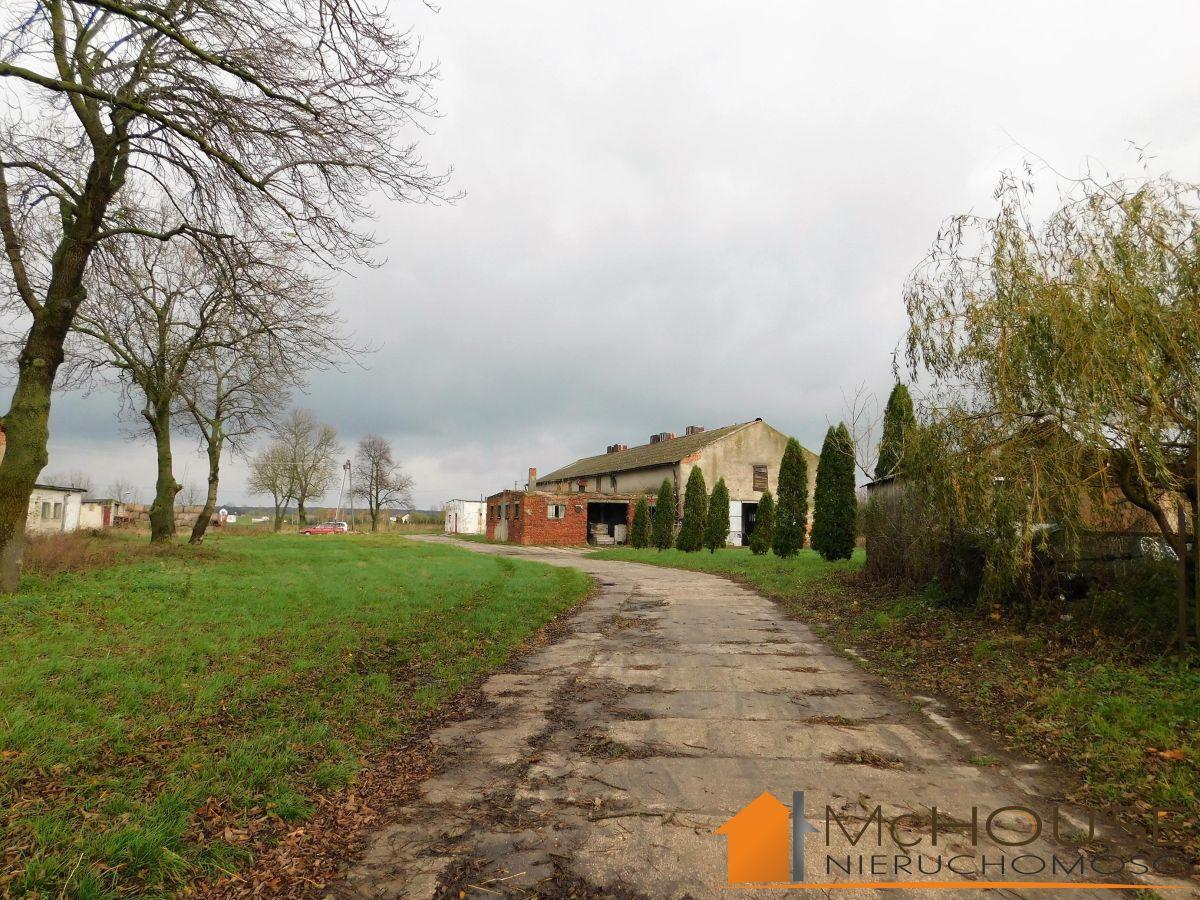 Staszów/okolice – ponad 8 ha gospodarstwo rolne