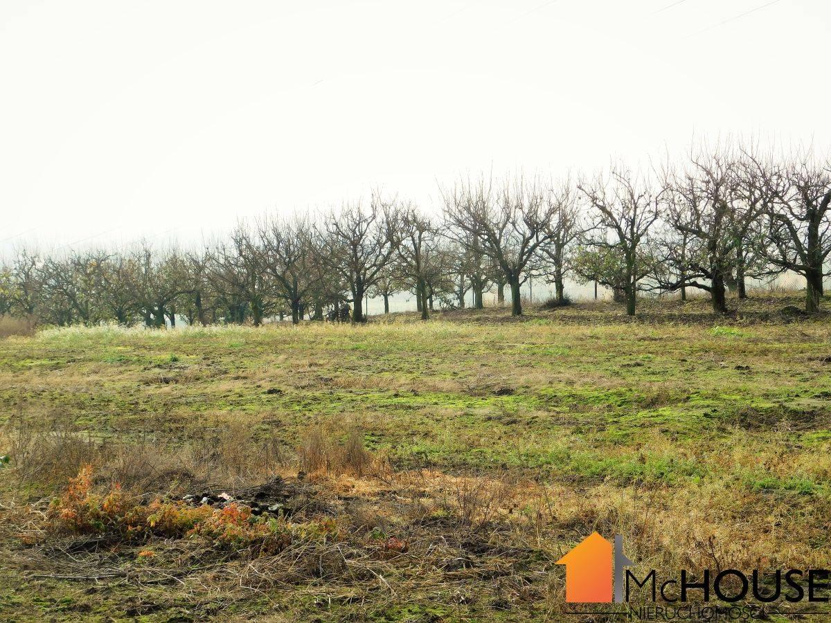 Słupia – ogrodzony SAD, media, 4,2 ha, media